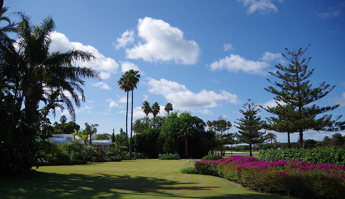 Sotogrande - Jardín urbano