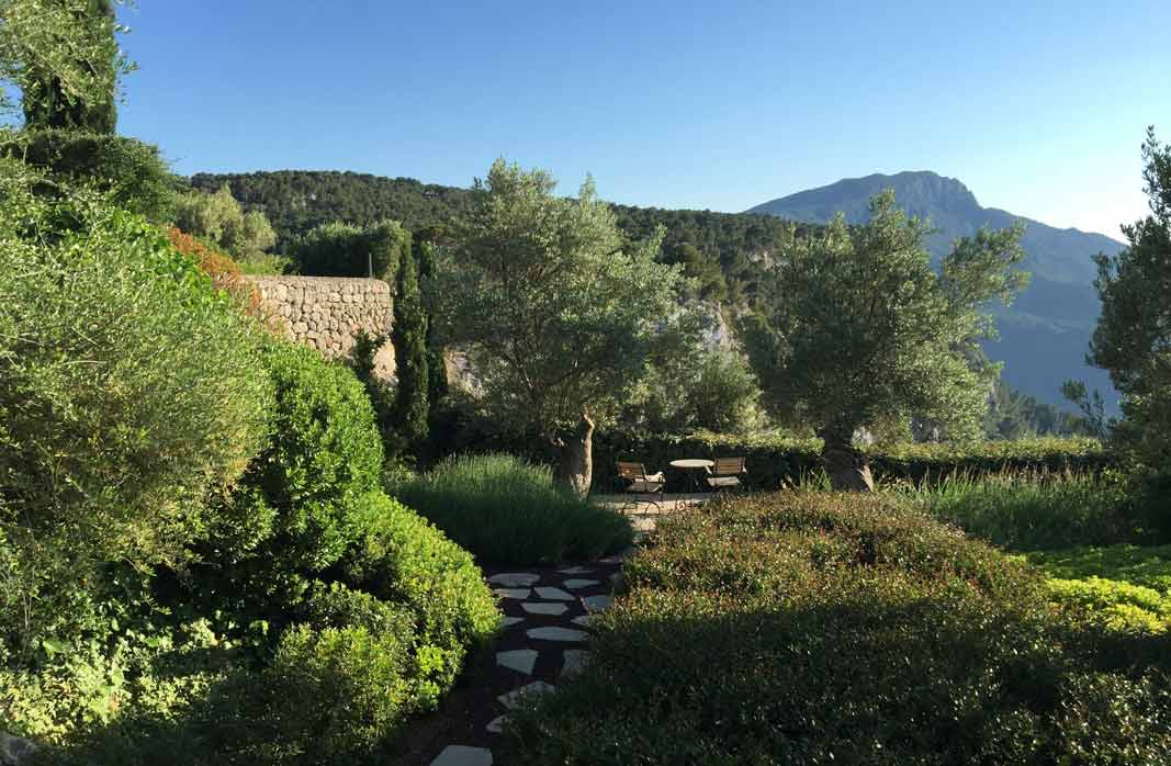 Valldemossa - Country garden