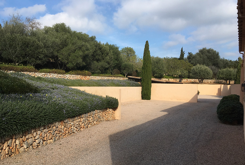 Alquería Blanca - Jardín de campo