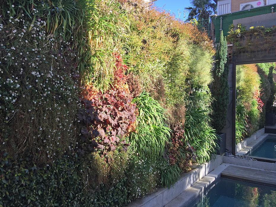 El Viso Guadiana - City garden