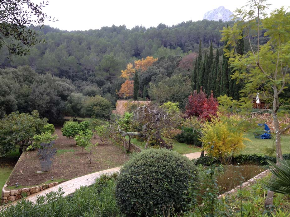 Pollensa - Country garden