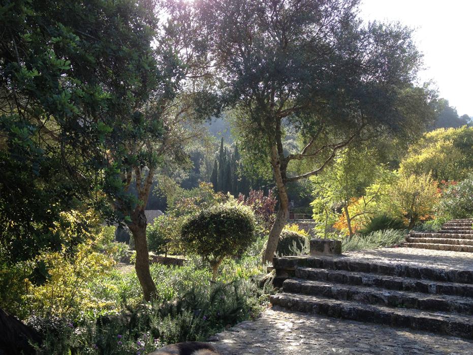 Pollensa - Jardín de campo