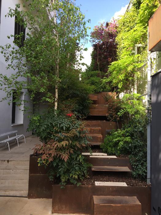 El Viso Ripoll - Jardín urbano