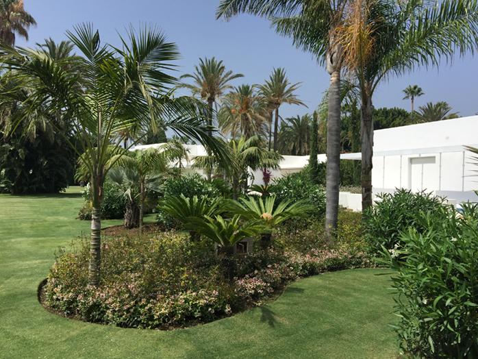 Sotogrante - City garden