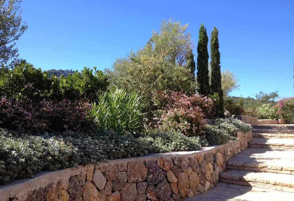 Valldemossa - Jardín de campo