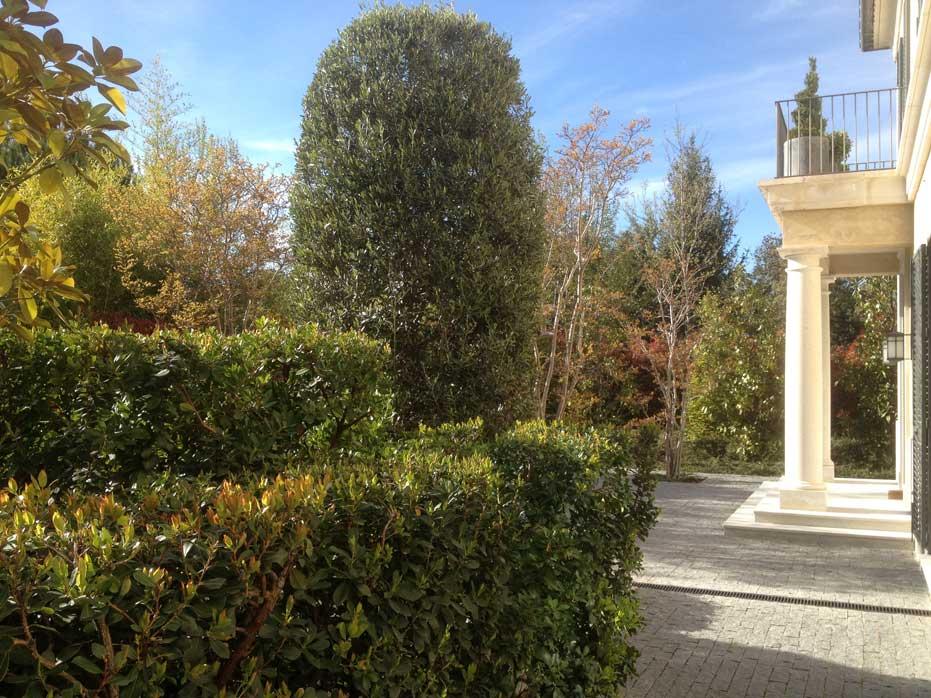 La Moraleja - City garden