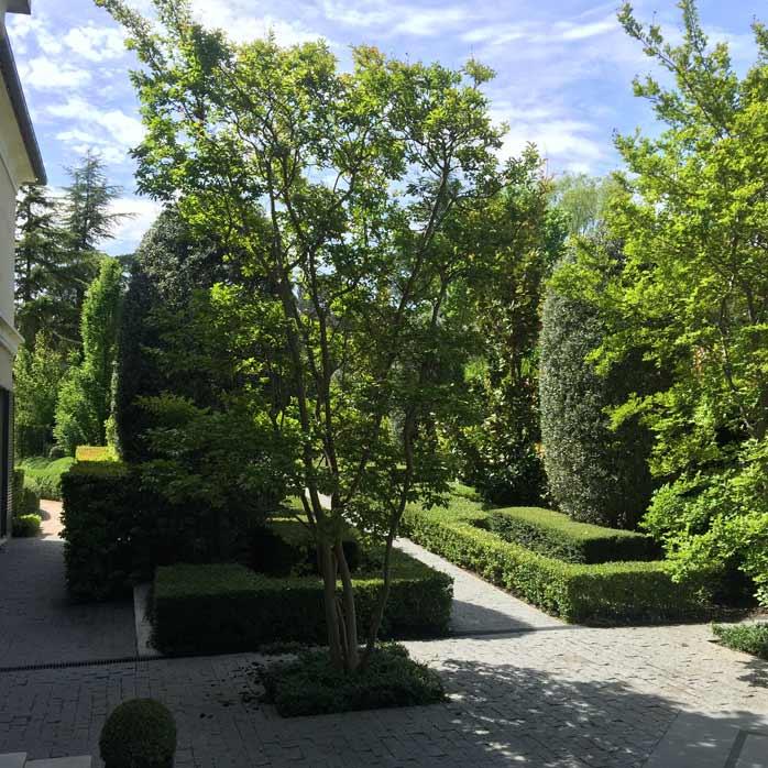 La Moraleja - Jardín urbano